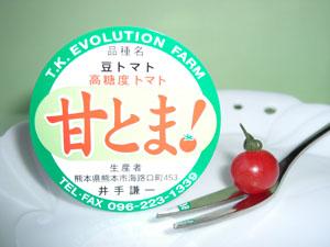 「トマト物語り Q&A-3」_c0126766_14522398.jpg