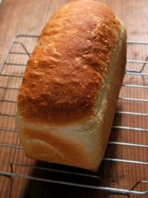砂糖・油脂なしのシンプル食パン_c0110869_2212676.jpg