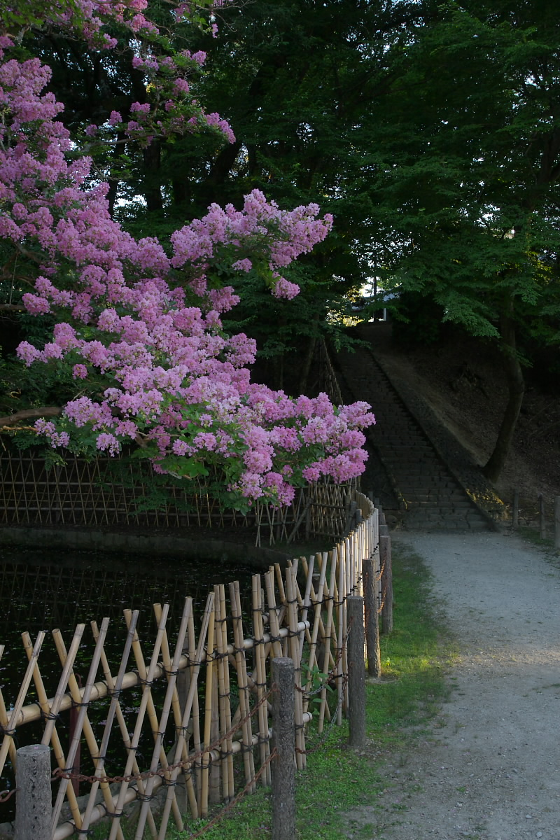 奈良 二月堂 界隈 2_f0021869_11353620.jpg