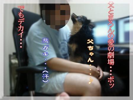 b0078073_21171370.jpg