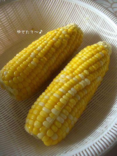 b0000885_1954783.jpg