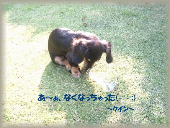 b0059087_18373860.jpg