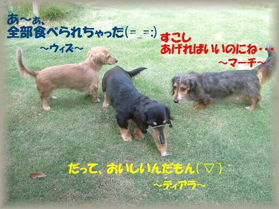 b0059087_1837592.jpg