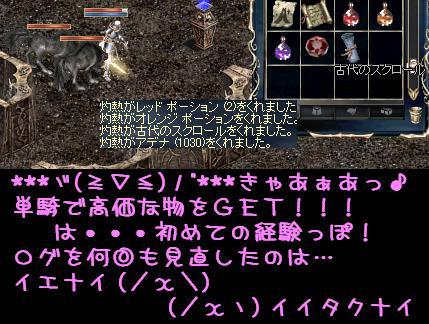 f0072010_034574.jpg
