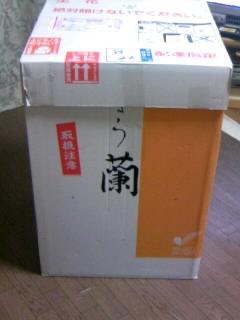 b0102023_15583933.jpg