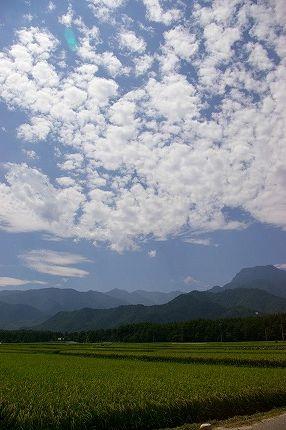 安曇野へ・・・ part.3(最終日)_c0093830_1145397.jpg