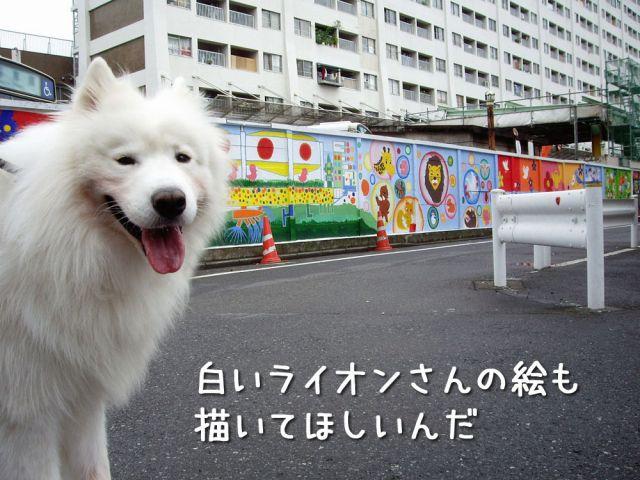 のんびりお散歩_c0062832_1845353.jpg
