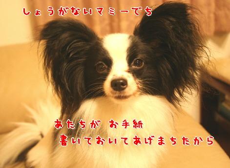 d0013149_161262.jpg