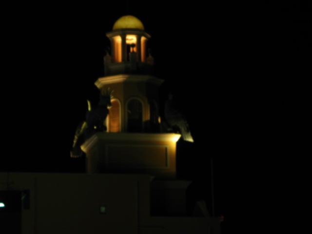 琵琶湖畔の夜 _a0106807_443252.jpg
