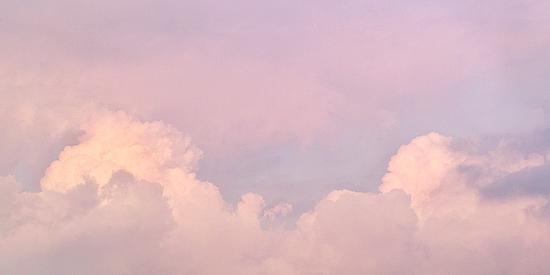 柔らかな色…_e0117517_18443233.jpg