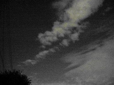 脱熱帯夜_f0041351_1722298.jpg
