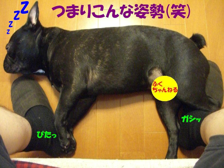 c0113109_014817.jpg