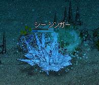 f0101117_209657.jpg