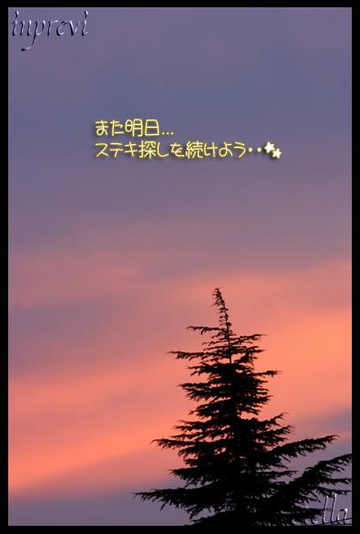 d0015026_9255123.jpg