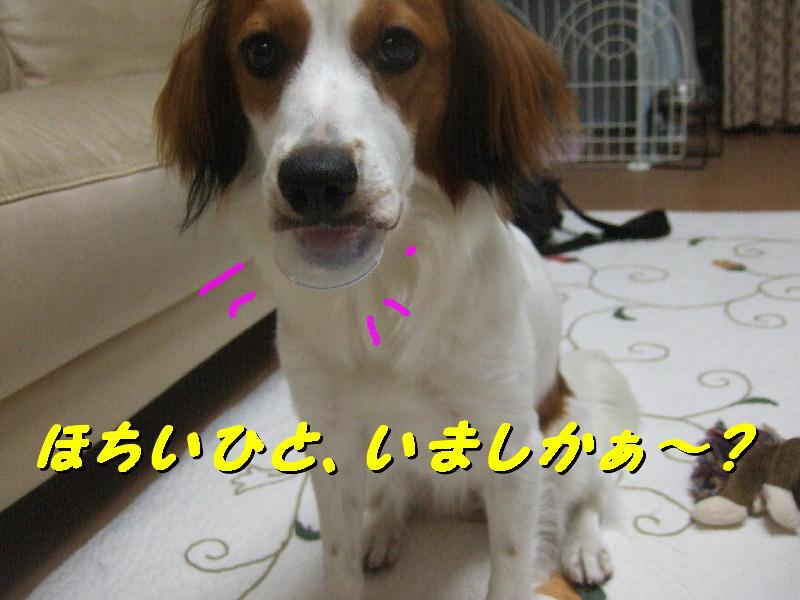 c0075585_1452941.jpg