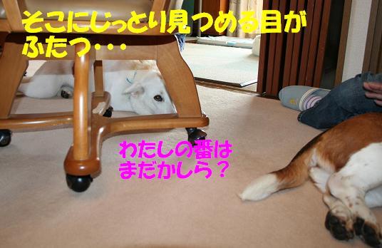 f0121712_23493272.jpg