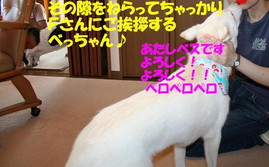 f0121712_23501629.jpg