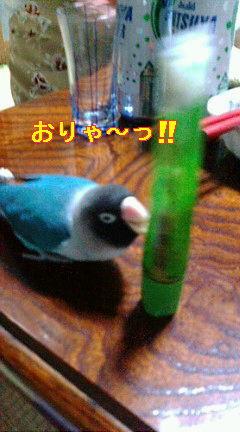 f0126418_13345954.jpg