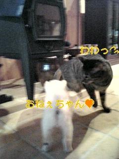 f0148927_1822338.jpg