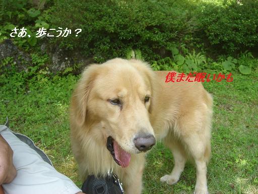 f0114128_20104965.jpg