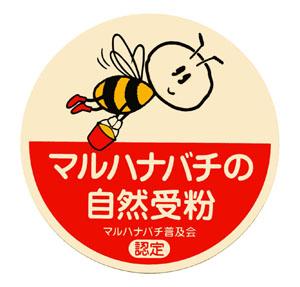 「トマト物語り Q&A-4」_c0126766_1071130.jpg