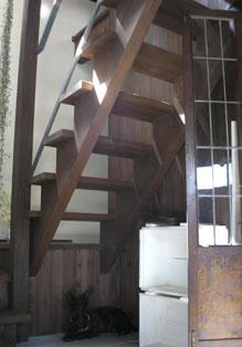 階段下のカブ_e0055098_10491826.jpg