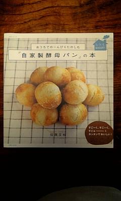 手づくりパン 本の紹介_d0080906_2056393.jpg