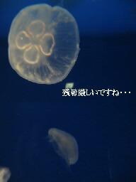 f0079722_21495339.jpg