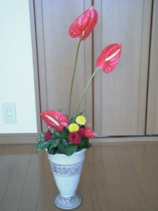 My Flower Arrangement_c0115560_18594370.jpg