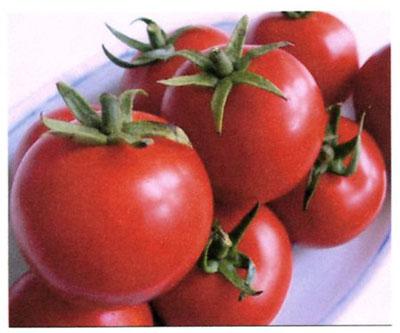 「トマト物語り Q&A-5」_c0126766_12272747.jpg