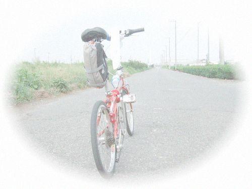f0056698_939508.jpg