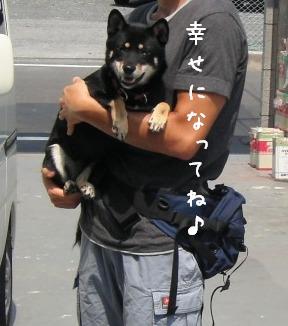 お嫁に行った志穂子ちゃん_f0068501_1044197.jpg