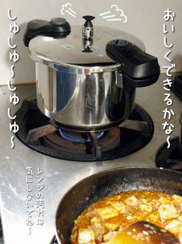 トリガラしゅしゅ~_c0062832_19291876.jpg