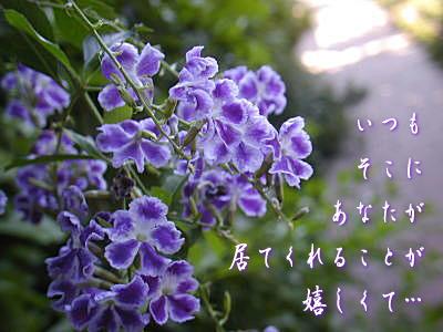 c0095663_2014886.jpg