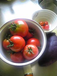 収穫_a0064366_13121285.jpg