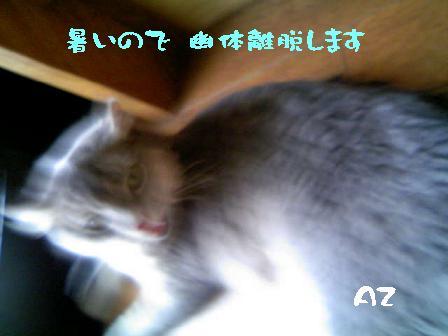 f0111467_13301877.jpg