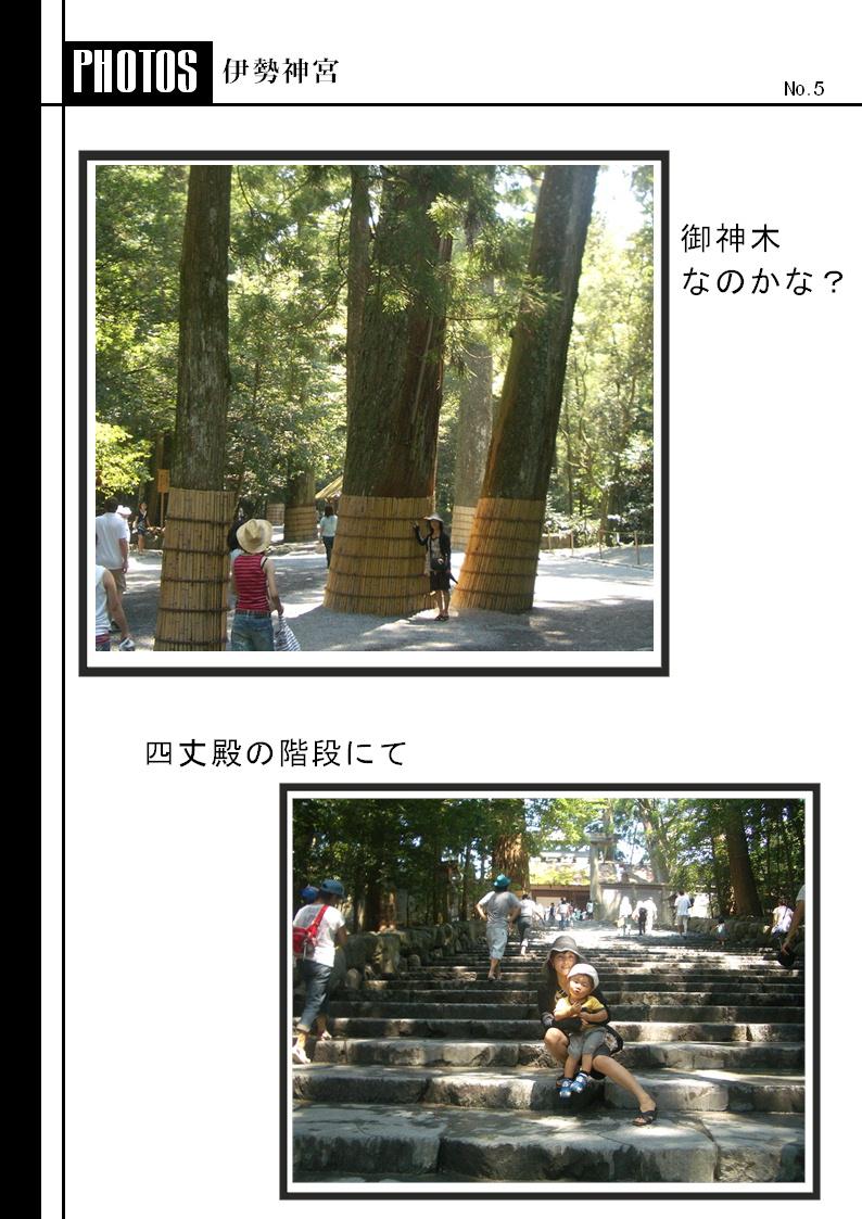 f0054868_1355636.jpg