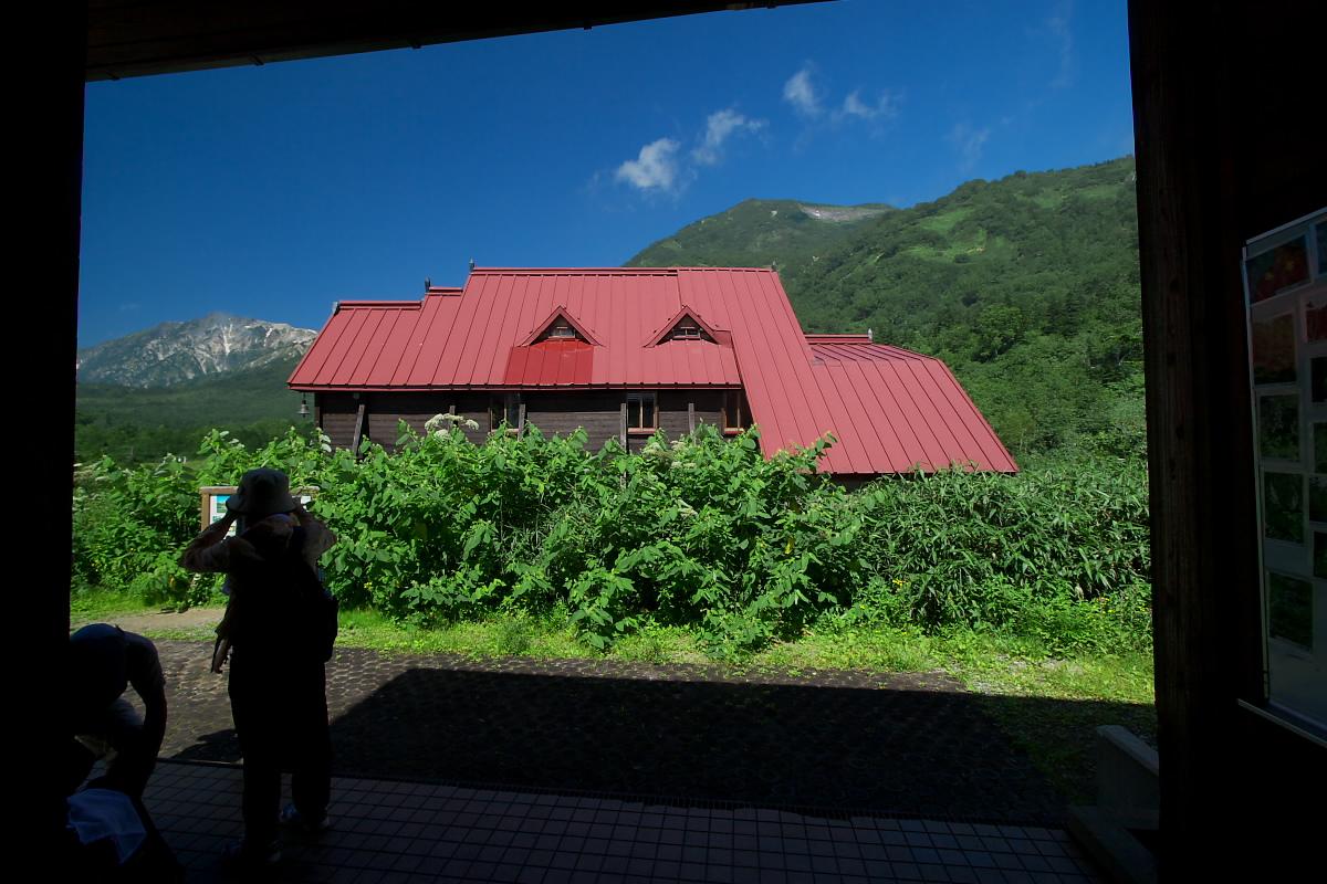 栂池自然園 <盆休み> 1_f0021869_22391345.jpg