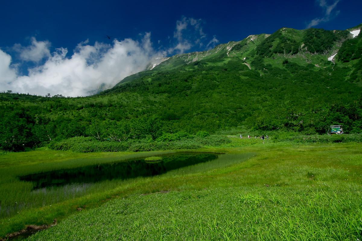 栂池自然園 <盆休み> 2_f0021869_22545424.jpg