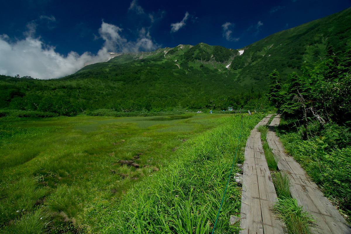 栂池自然園 <盆休み> 2_f0021869_22552634.jpg