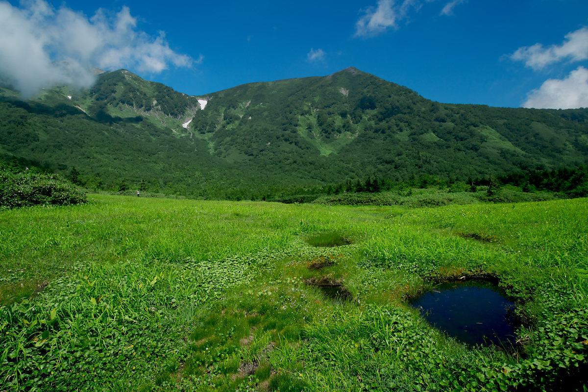 栂池自然園 <盆休み> 2_f0021869_22561182.jpg