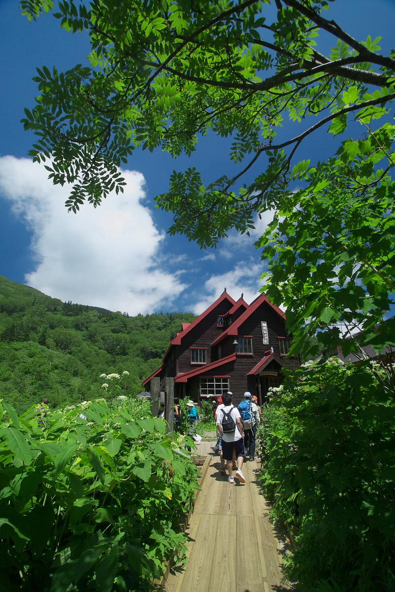 栂池自然園 <盆休み> 2_f0021869_2301382.jpg