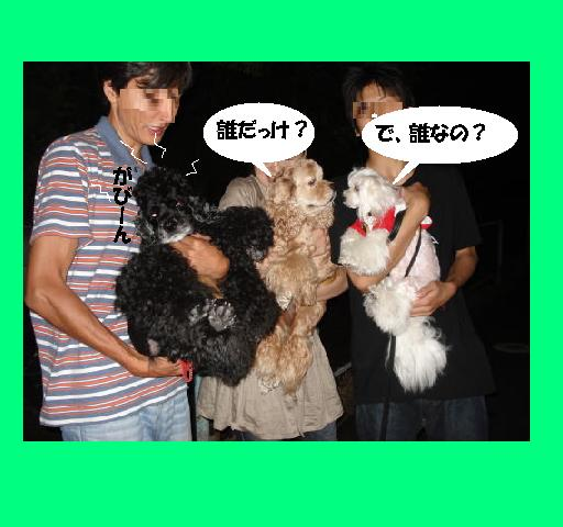 f0096569_048787.jpg