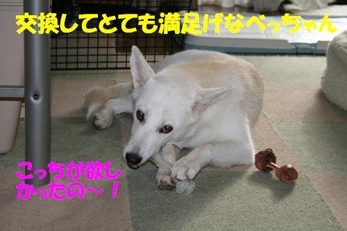 f0121712_15444527.jpg