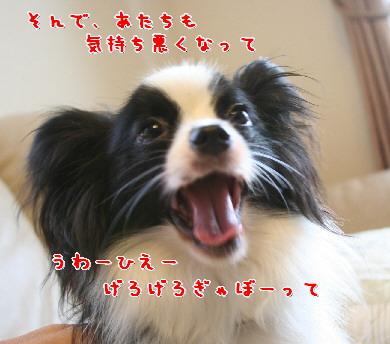 d0013149_3709.jpg