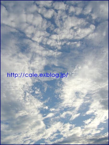 a0048852_17341984.jpg