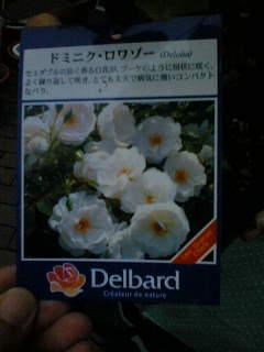 b0061261_22423892.jpg