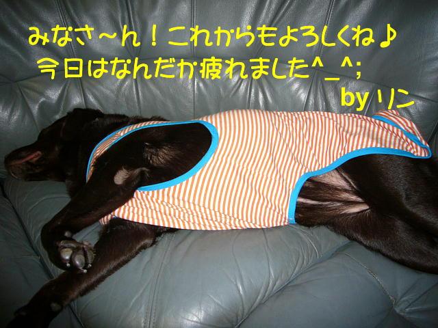f0057565_0442493.jpg