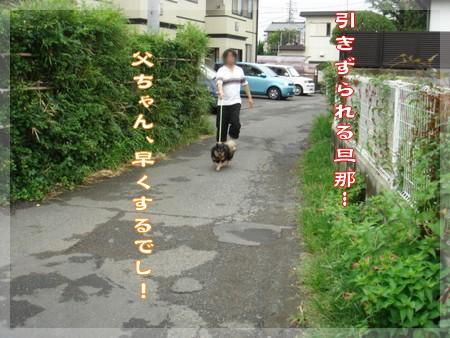 b0078073_1819333.jpg