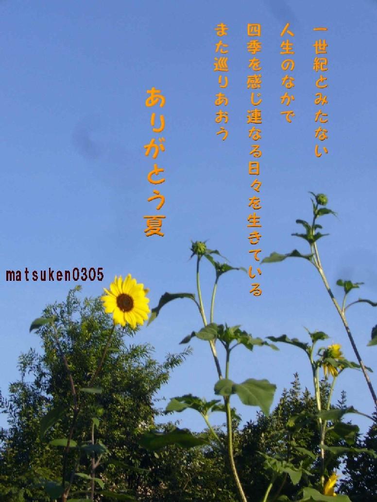 d0088313_20233148.jpg